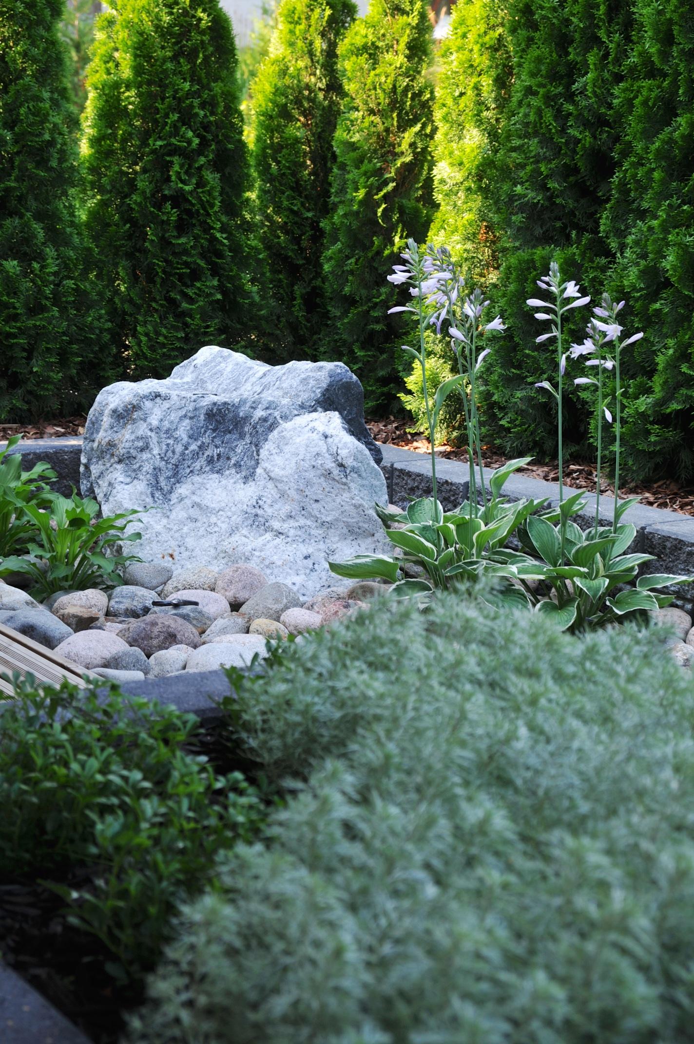 Katseenvangitsijana Pilvi-kivi, jonka valitsin yhdessä viherurakoitsijan kanssa louhokselta.