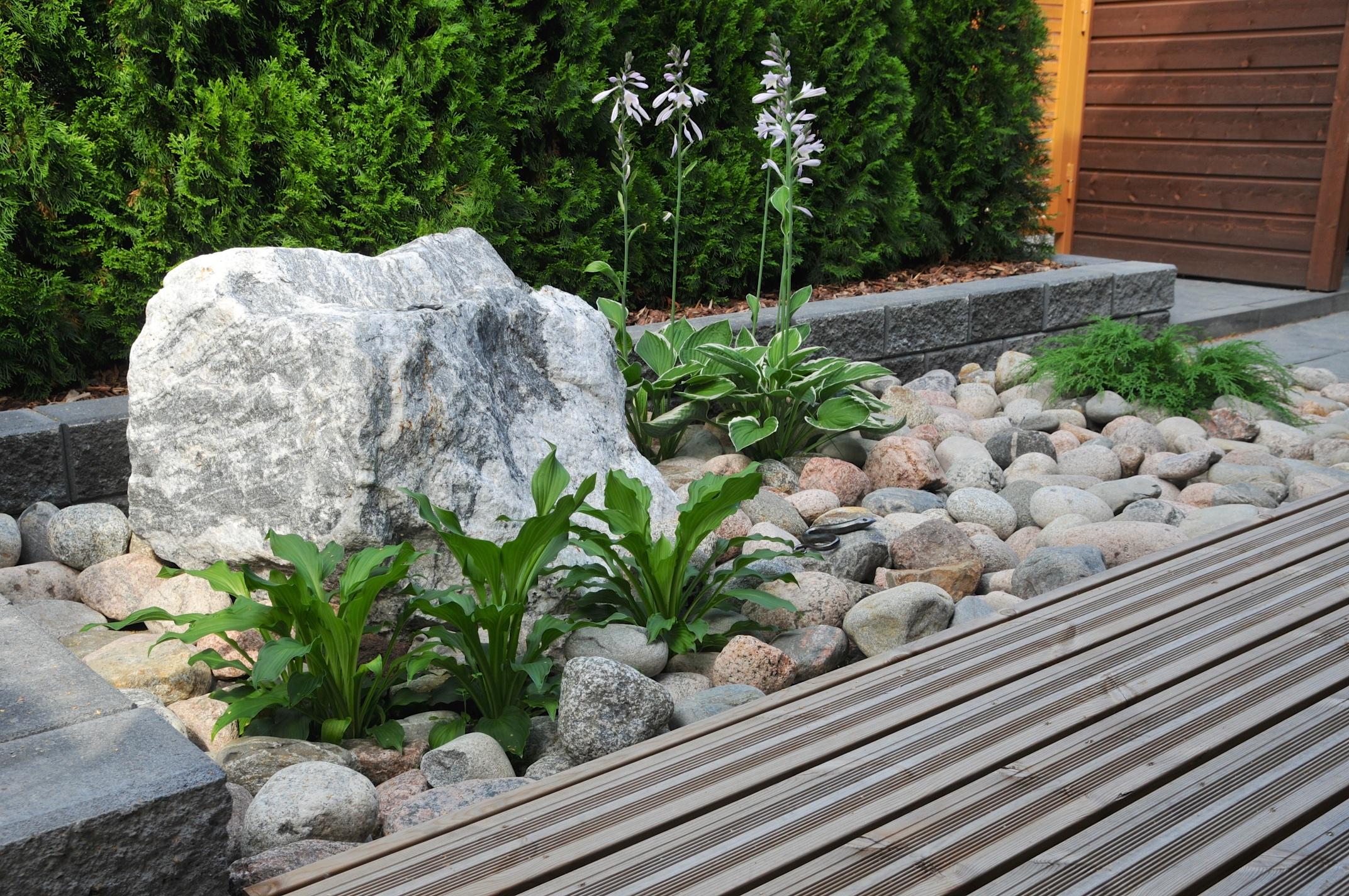 Rivitalopiha ilman nurmikkoa