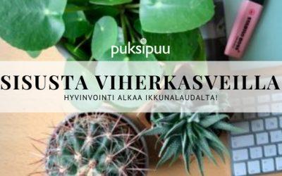 Viherkasvit – hyvinvointi alkaa ikkunalaudalta